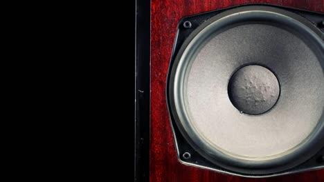 Speaker-Pan-01