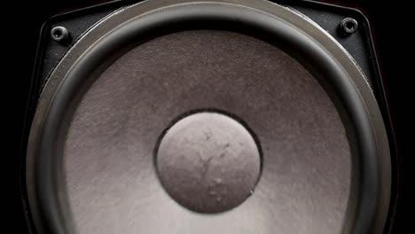 Speaker-Pump-11