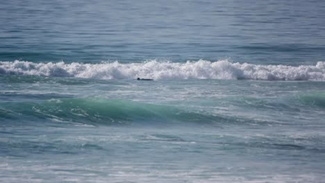 Taghazout-Surf-00