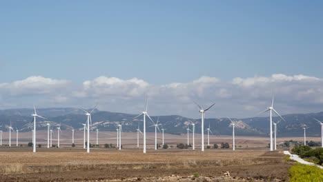 Tarifa-Windturbines-00