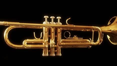 Trumpet-02