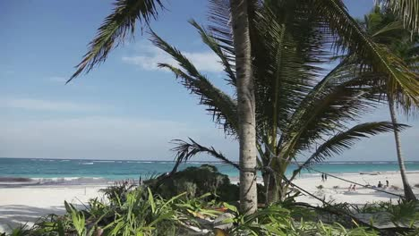 Tulum-Beach-Video-02
