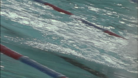 Swimmers-race-across-a-pool
