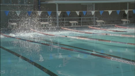Swimmers-jumping-in-the-water-and-swimming-front-crawl
