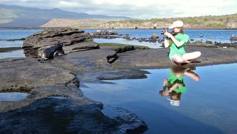 Young-photographer-enjoying-two-Galapagos-Sea-Lion-pups-playing-in-Galapagos-National-Park-Ecuador