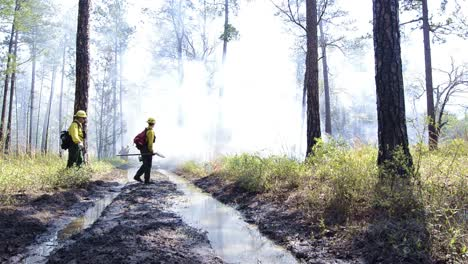 Fire-crew-monitoring-a-prescribed-burn-in-Moody-Forest-Natural-Area-near-Baxley-Georgia