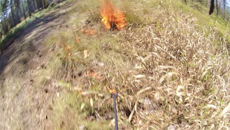 Point-of-view-of-a-prescribed-burn-with-a-drip-torch-near-Baxley-Georgia