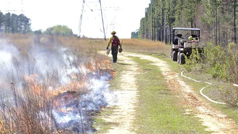 A-fire-crew-member-lighting-a-prescribed-fire-with-a-drip-torchvnear-Baxley-Georgia