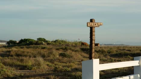 Africa-Sign-00