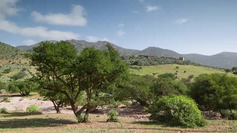 Argan-Valley-00