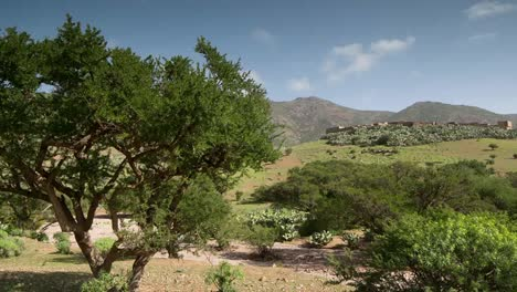 Argan-Valley-1