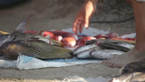 Zihua-Fishermen-27