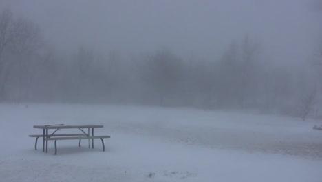A-Blizzard-Strikes-Closing-A-Public-Park