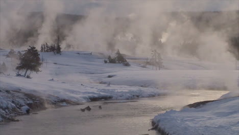 Winter-In-Yellowstone-National-Park-5