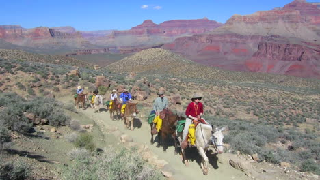 A-Horseback-Riding-Team-Navigates-The-Trail-To-The-Bottom-Of-The-Grand-Canyon-1