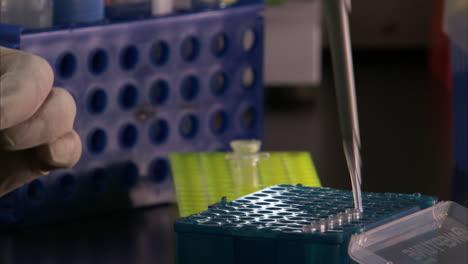 En-El-Centro-De-Secuenciación-Del-Genoma-Del-Gobierno-De-EE-UU-Se-Analiza-El-ADN-En-El-Laboratorio-1