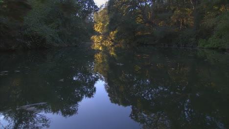 Beautiful-Traveling-Shot-Through-A-Jungle-River-Scene