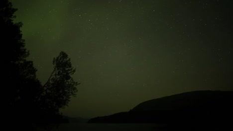 Aurora-13