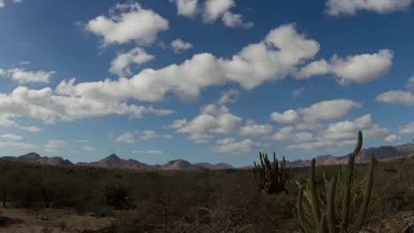 Baja-Desert-00