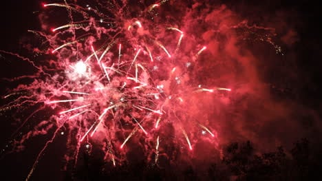 Barcelona-Fireworks-09