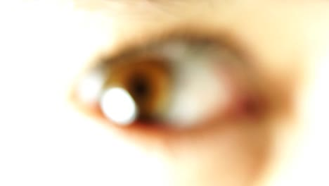 Big-Eye-Macro-03