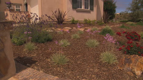Californians-Are-Asked-To-Turn-Of-Sprinklers-And-Conserve-Water-During-A-Drought