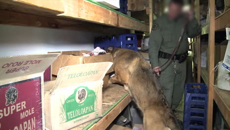 Special-Agents-From-The-Us-Immigration-And-Customs-Service-Raid-A-Mexican-Mini-Mart-To-Make-Arrests-2