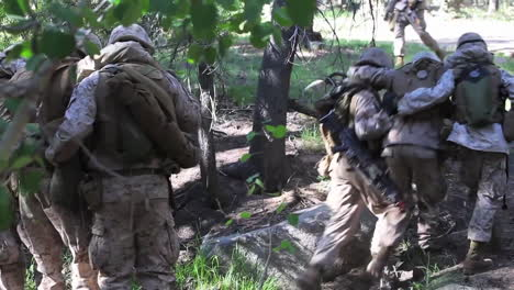 Marines-Evacuate-Wounded-And-Injured-Through-A-Forest