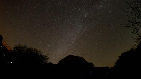 Cabo-Pulmo-Stars-02