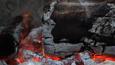 Campfire-Macro-00