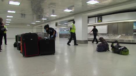 Seguridad-Nacional-Utiliza-Perros-Rastreadores-Caninos-Para-Buscar-Drogas-En-Un-Aeropuerto-Estadounidense-5
