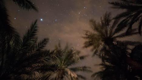 Estrellas-Del-Desierto-02