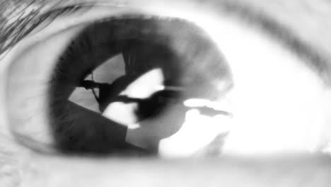 Eye-Closeup-00