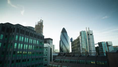 Gherkin-Evening-Raw-00