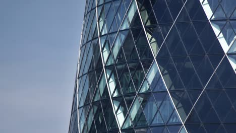 Gherkin-Close-Up-01