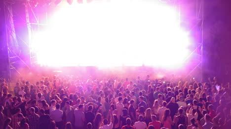 Summer-Festival-Scene-24