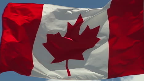 The-Canadian-Flag-Flying-Against-Blue-Sky