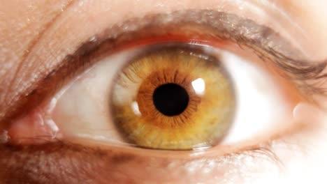Eye-08