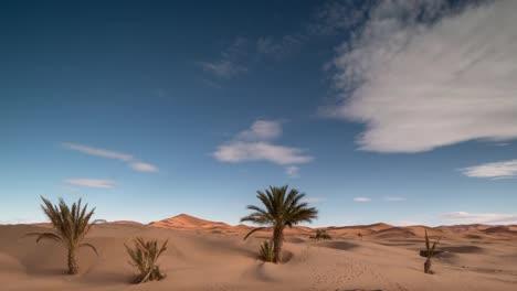 Merzouga-Desert-02