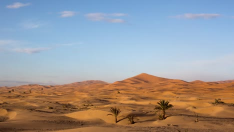 Merzouga-Desert-10