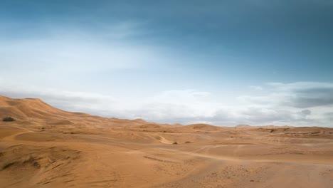 Merzouga-Desert-11