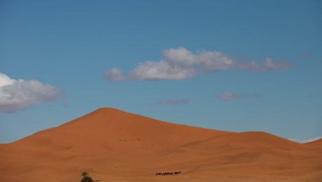 Merzouga-Desert-15