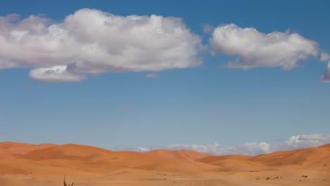 Merzouga-Desert-16