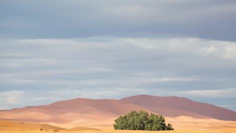 Merzouga-Desert-22