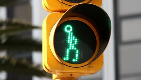 Mexico-Traffic-Light3