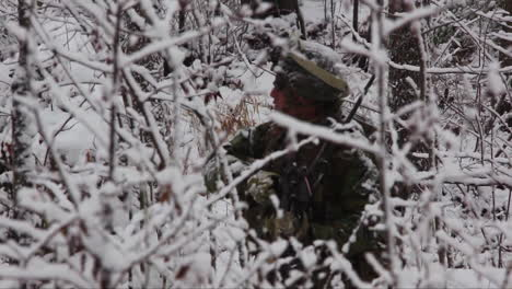Us-Marines-Commandos-Patrol-In-A-Snowy-Forest-In-A-Winter-Exercise