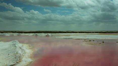 Pink-Sea-00