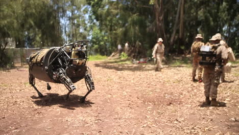The-Legged-Squad-Support-System-Robotic-Mule-Is-Demonstrated-By-The-Us-Army-3
