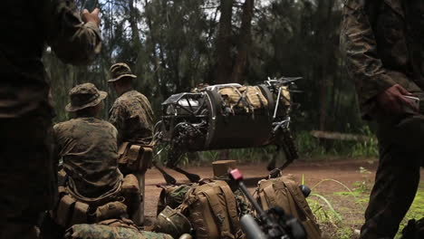 The-Legged-Squad-Support-System-Robotic-Mule-Is-Demonstrated-By-The-Us-Army-6