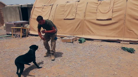 Marines-On-Patrol-In-Afghanistan-Use-Bomb-Sniffing-Dogs-To-Detect-Ieds